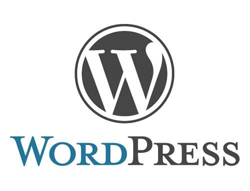 Wat uw webbouwer ook zegt, ook uw nieuwe website kan gewoon in Wordpress gemaakt worden!